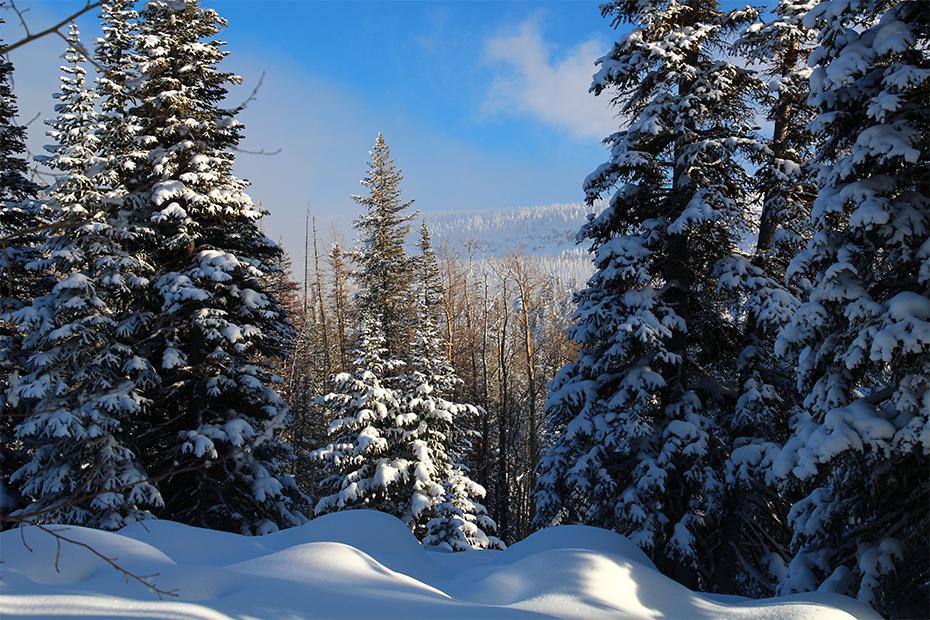 Most-Scenic-Winter-Views