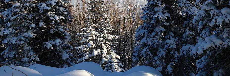 Grand-Mesa-in-winter_desktop