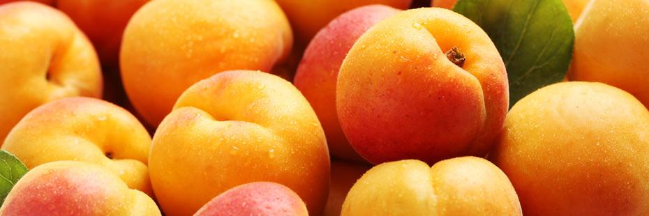 fruits-vegetables-in-season-in-july