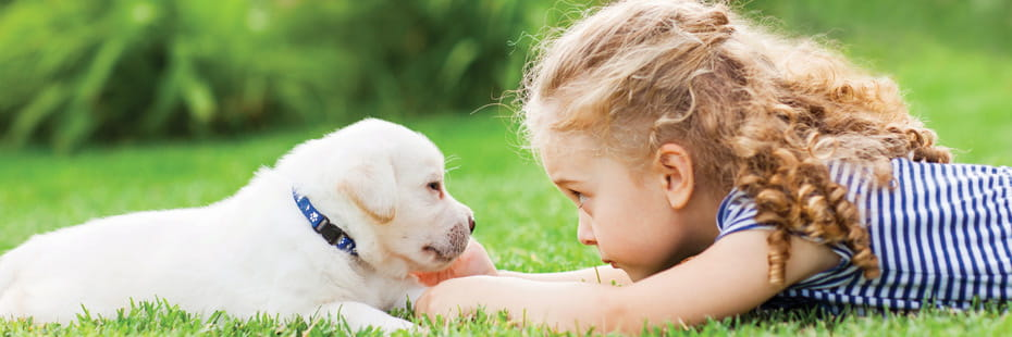 little-girl-lying-in-grass-with-puppy