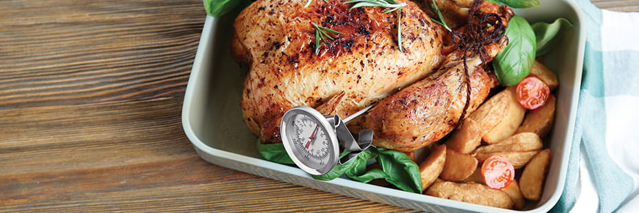 turkey-with-meat-thermometer_desktop