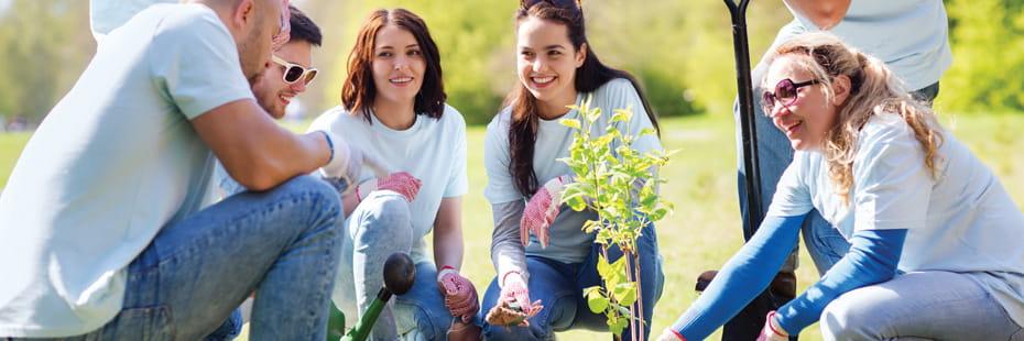 volunteers-planting-a-tree