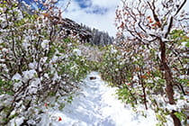 Black-Canyon-hiking-trail-snow