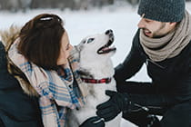 couple-laughing-with-husky-dog (2)