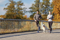 couple-running-with-dog