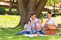 family-picnic_mobile