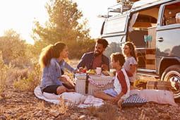 family-picnic_tb