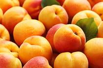 fruits-vegetables-in-season-in-july_mobile