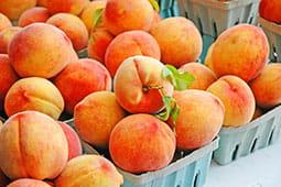 peach-recipes_tb