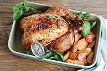turkey-with-meat-thermometer