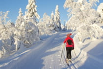 woman-cross-country-skiing