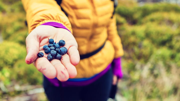 woman holding blueberries
