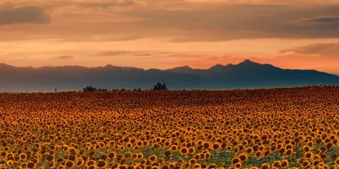 hazy-orange-sunset-over-Colorado-mountains