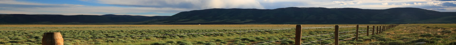 fencing-along-a-Colorado-field