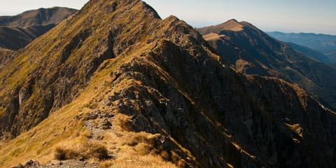 a brown grassy mountain top