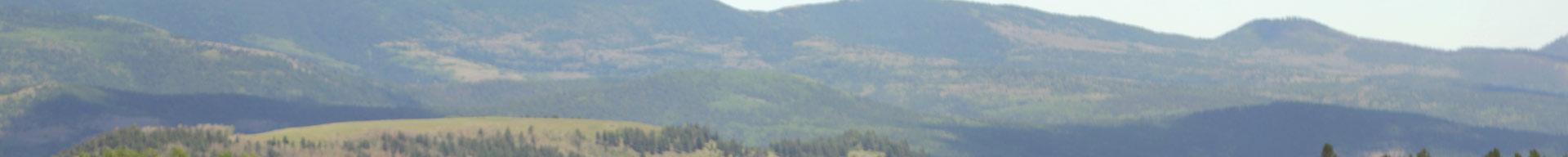 view of grassy mountain plains